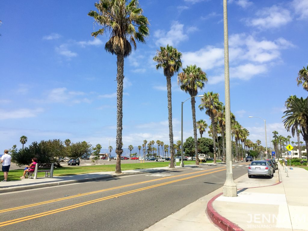 Los Angeles Road with Palm Trees