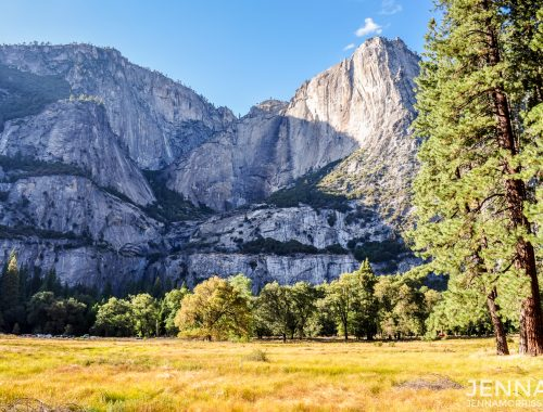 Yosemite Valley Meadow at sunset