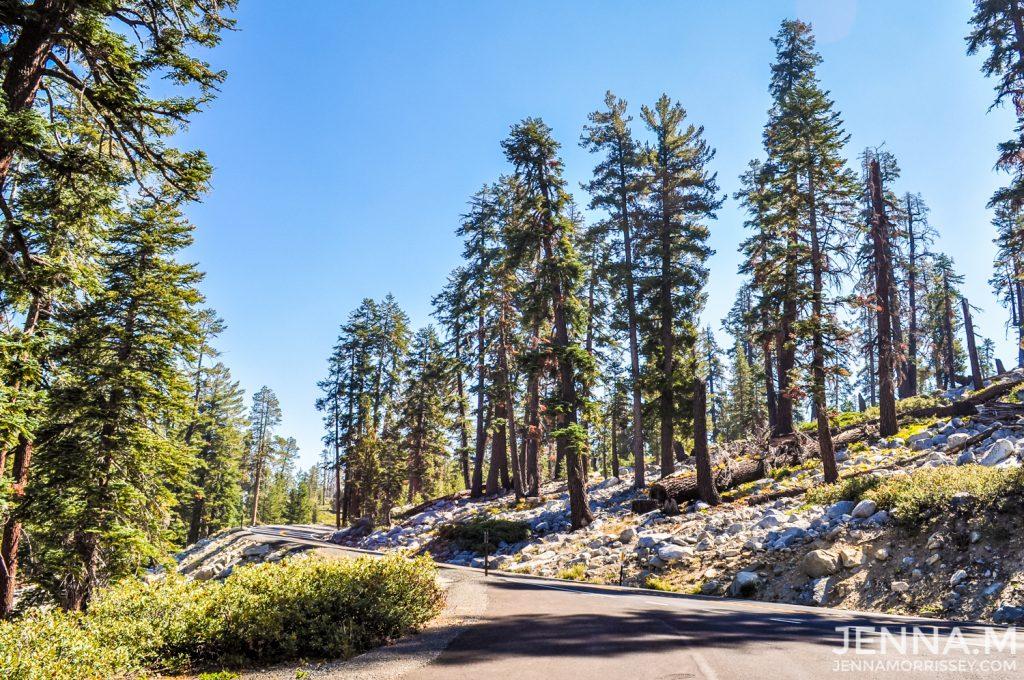 Yosemite National Park Tioga Pass